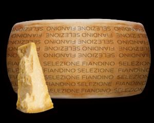 Selezione Fiandino