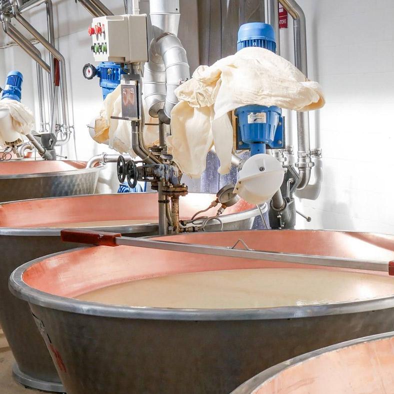 """<h2>Il Metodo Kinara: una scelta naturale</h2><p>Una delle peculiarità che contraddistinguono la produzione dei formaggi delle Fattorie Fiandino è sicuramente l'ideazione del Metodo Kinara e il suo utilizzo.<br />La chiave di volta, infatti, è proprio il <em>Cynara cardunculus</em> (il comune cardo selvatico) che cresce spontaneo e rigoglioso sulle montagne del cuneese. Grazie ad un particolare processo, questa preziosissima pianta viene trasformata in vero """"caglio vegetale"""" e utilizzato come alternativa a quello animale. Così facendo, Fattorie Fiandino ottengono prodotti caseari ricercati, dalle proprietà organolettiche originali, dalla consistenze morbida e dal profumo unico nel suo genere.</p>"""