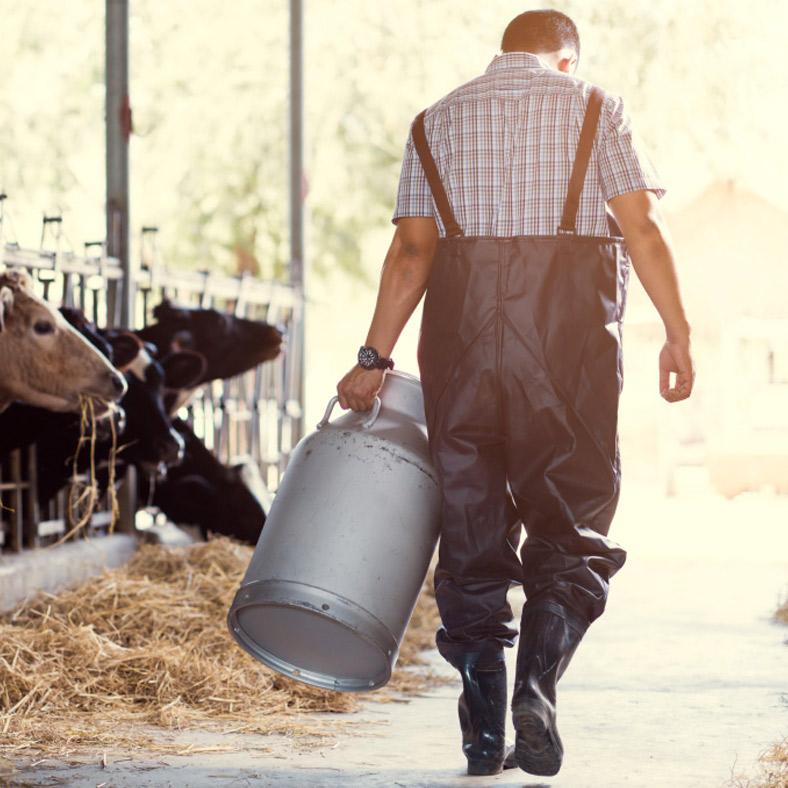 """<h2>Il grande cuore del latte</h2><p>Se il """"cuore"""" dei prodotti caseari è il latte, il caseificio Valle Macra ha deciso di utilizzare solo quello di fornitori locali capace di garantire la migliore qualità possibile.<br />Questo è il motivo per cui, che si tratti di latte vaccino o di """"puro pecora"""", tutti i formaggi prodotti conservano proprietà organolettiche marcate e facilmente riconoscibili che ne garantiscono una bontà davvero unica.</p>"""